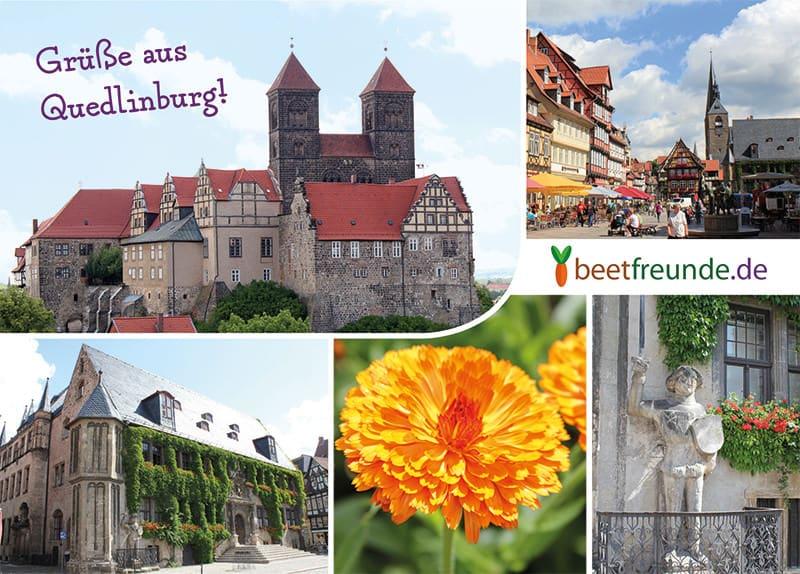 Postkarte mit Bildern von Quedlinburg