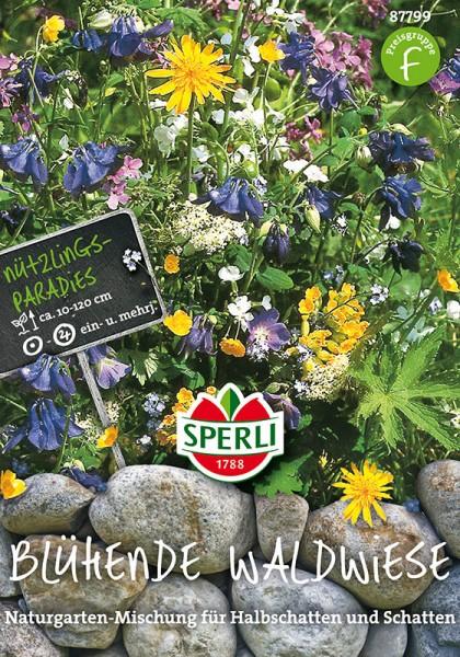 Blumenmischung Blühende Waldwiese