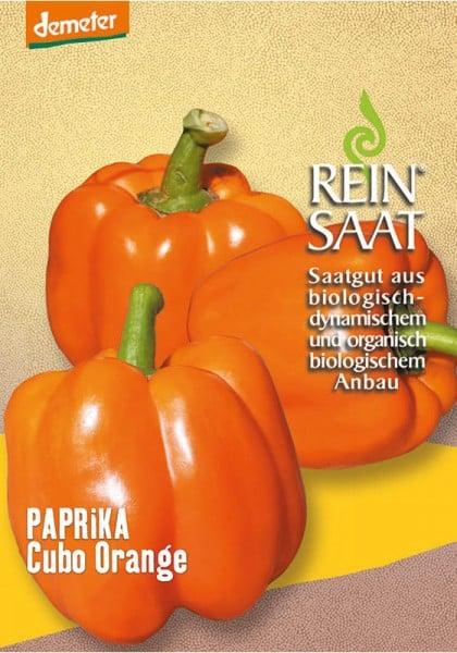 Paprika Cubo orange