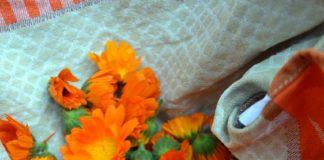 Gesammelte Ringelblumen in Geschirrtuch