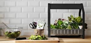IKEA Hydrokultur Anzuchtsystem