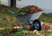Schubkarre mit Blättern