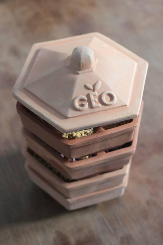GEO Keimgerät mit 4 Schalen