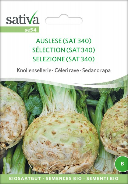 Knollensellerie Auslese (SAT340)