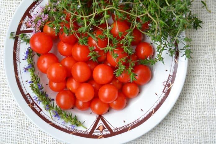 tomaten ernten und richtig lagern. Black Bedroom Furniture Sets. Home Design Ideas