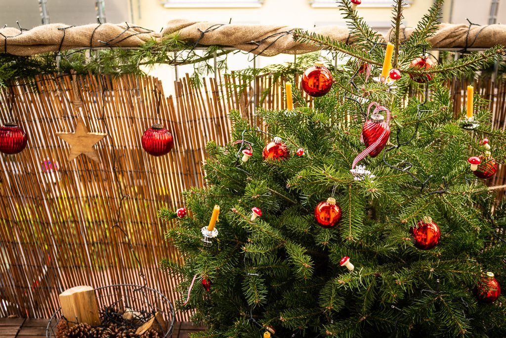 Weihnachtsdeko Für Balkongeländer.Natürliche Weihnachtsdeko Für Den Balkon Beetfreunde De