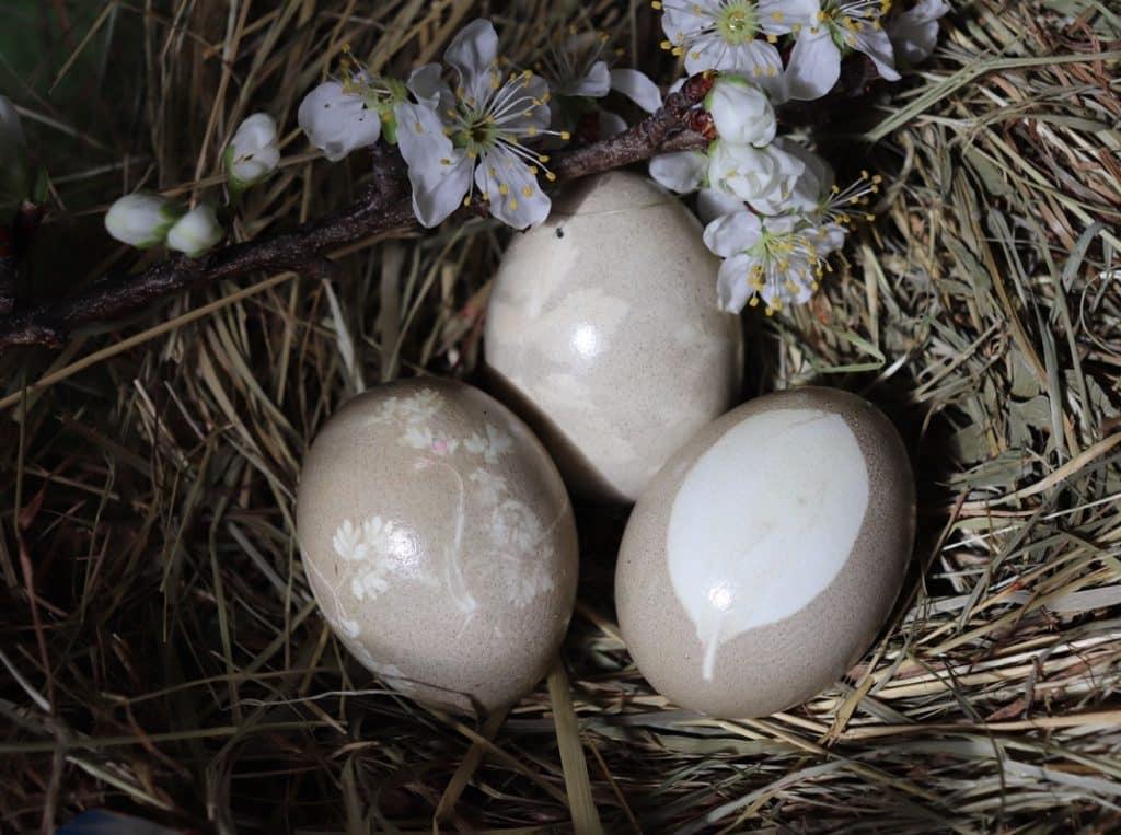 Ostereier-Naturfarben