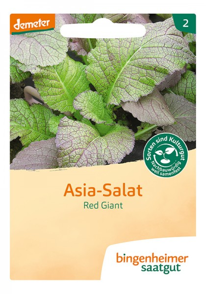 Asia – Salat Red Giant