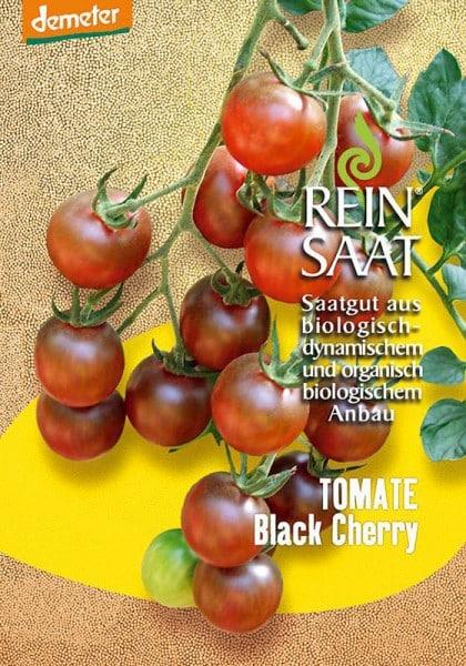 Cocktailtomate Black Cherry